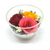 Цветы в стекле Нежное трио