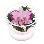 Цветы в стекле Комплимент