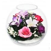 Цветы в стекле Ночная тишина