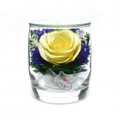 Цветы в стекле Поцелуй-3