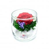 Цветы в стекле Искорка