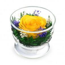 Цветы в стекле Лучик солнца