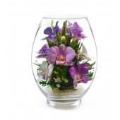Цветы в стекле Свежесть